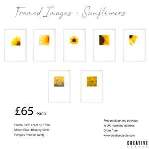 A Framed images 3