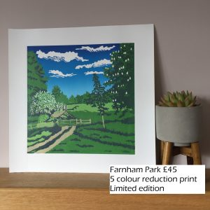 Farnham park(3)